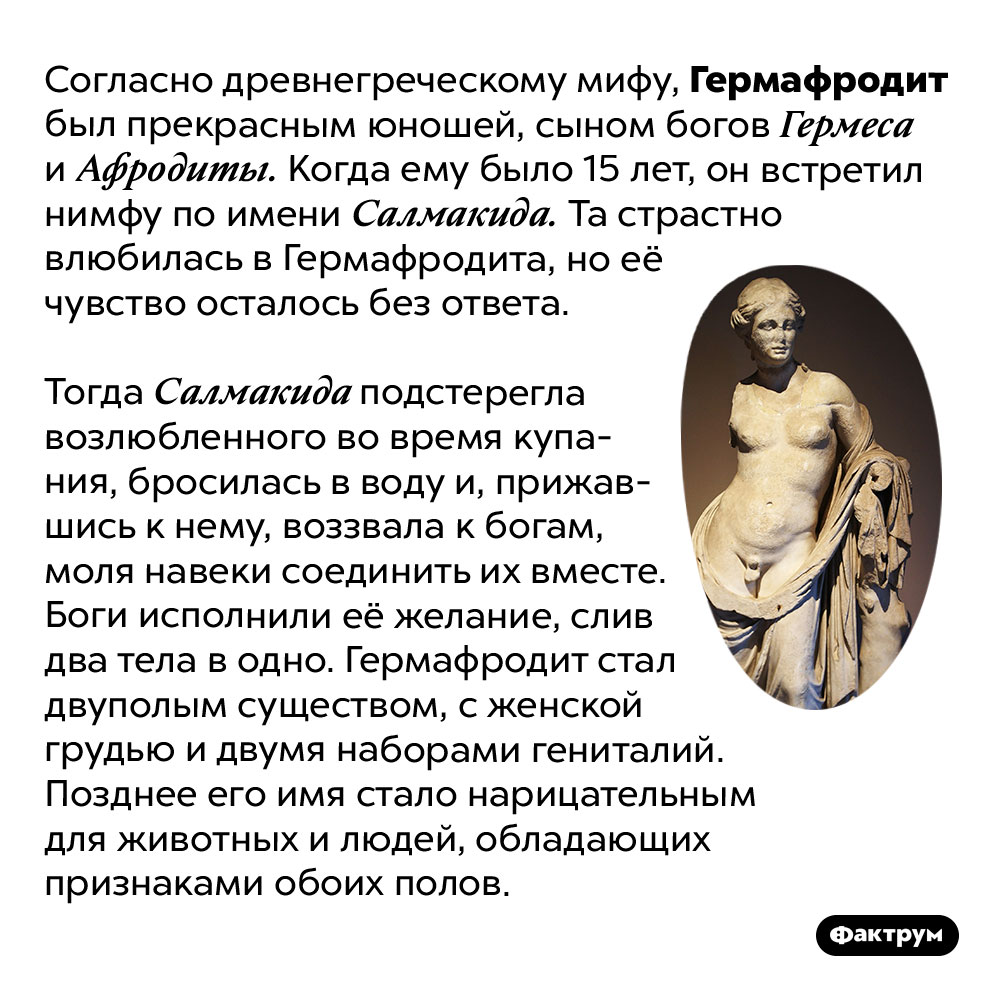 Кем был Гермафродит. Согласно древнегреческому мифу, Гермафродит был прекрасным юношей, сыном богов Гермеса и Афродиты. Когда ему было 15 лет, он встретил нимфу по имени Салмакида. Та страстно влюбилась в Гермафродита, но её чувство осталось без ответа.  Тогда Салмакида подстерегла возлюбленного во время купания, бросилась в воду и, прижавшись к нему, воззвала к богам, моля навеки соединить их вместе. Боги исполнили её желание, слив два тела в одно. Гермафродит стал двуполым существом, с женской грудью и двумя наборами гениталий. Позднее его имя стало нарицательным для животных и людей, обладающих признаками обоих полов.