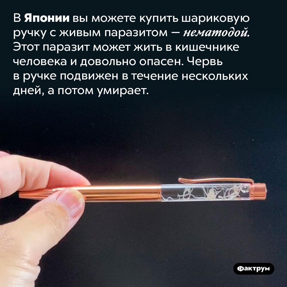 Шариковая ручка спаразитом внутри. В Японии вы можете купить шариковую ручку с живым паразитом — нематодой. Этот паразит может жить в кишечнике человека и довольно опасен. Червь в ручке подвижен в течение нескольких дней, а потом умирает.