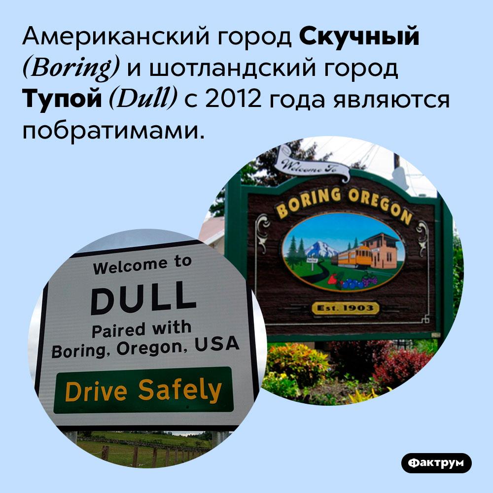 Скучный иТупой — города-побратимы. Американский город Скучный <em>(Boring)</em> и шотландский город Тупой <em>(Dull)</em> с 2012 года являются побратимами.
