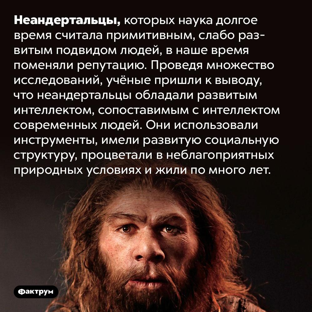 Неандертальцы небыли примитивными. Неандертальцы, которых наука долгое время считала примитивным, слабо развитым подвидом людей, в наше время поменяли репутацию. Проведя множество исследований, учёные пришли к выводу, что неандертальцы обладали развитым интеллектом, сопоставимым с интеллектом современных людей. Они использовали инструменты, имели развитую социальную структуру, процветали в неблагоприятных природных условиях и жили по много лет.