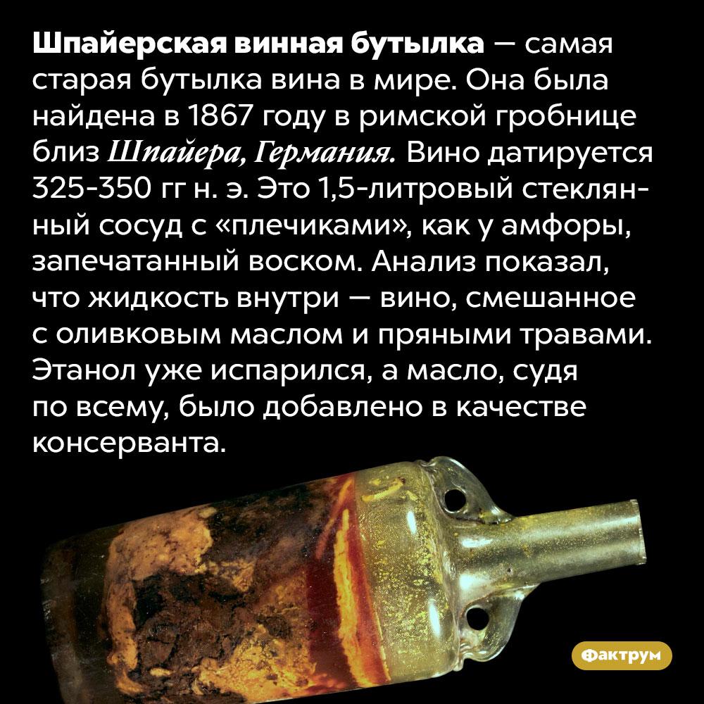 Самая старая бутылка вина вмире датирована четвёртым веком н. э.. Шпайерская винная бутылка — самая старая бутылка вина в мире. Она была найдена в 1867 году в римской гробнице близ Шпайера, Германия. Вино датируется 325-350 гг н. э. Это 1,5-литровый стеклянный сосуд с «плечиками», как у амфоры, запечатанный воском. Анализ показал, что жидкость внутри — вино, смешанное с оливковым маслом и пряными травами. Этанол уже испарился, а масло, судя по всему, было добавлено в качестве консерванта.