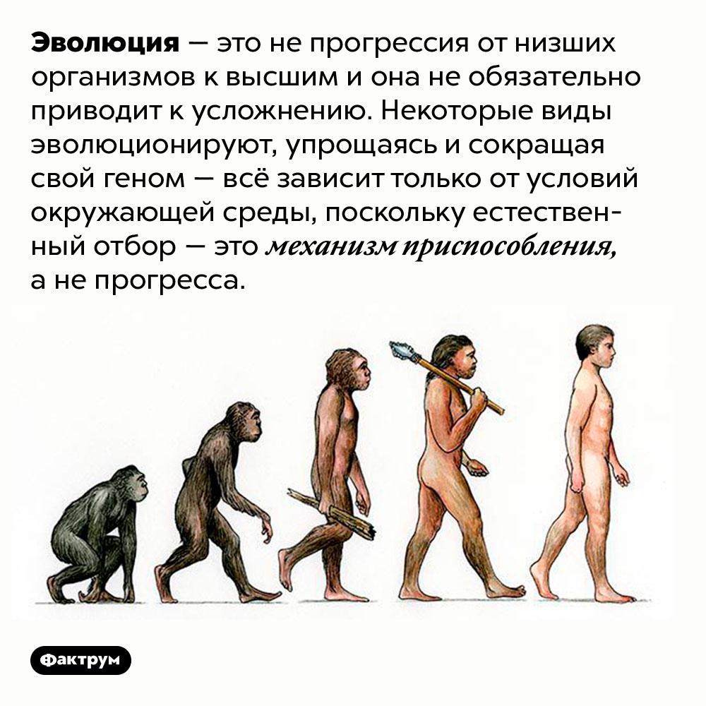 Эволюция — это непрогресс. Эволюция — это не прогрессия от низших организмов к высшим и она не обязательно приводит к усложнению. Некоторые виды эволюционируют, упрощаясь и сокращая свой геном — всё зависит только от условий окружающей среды, поскольку естественный отбор — это механизм приспособления, а не прогресса.