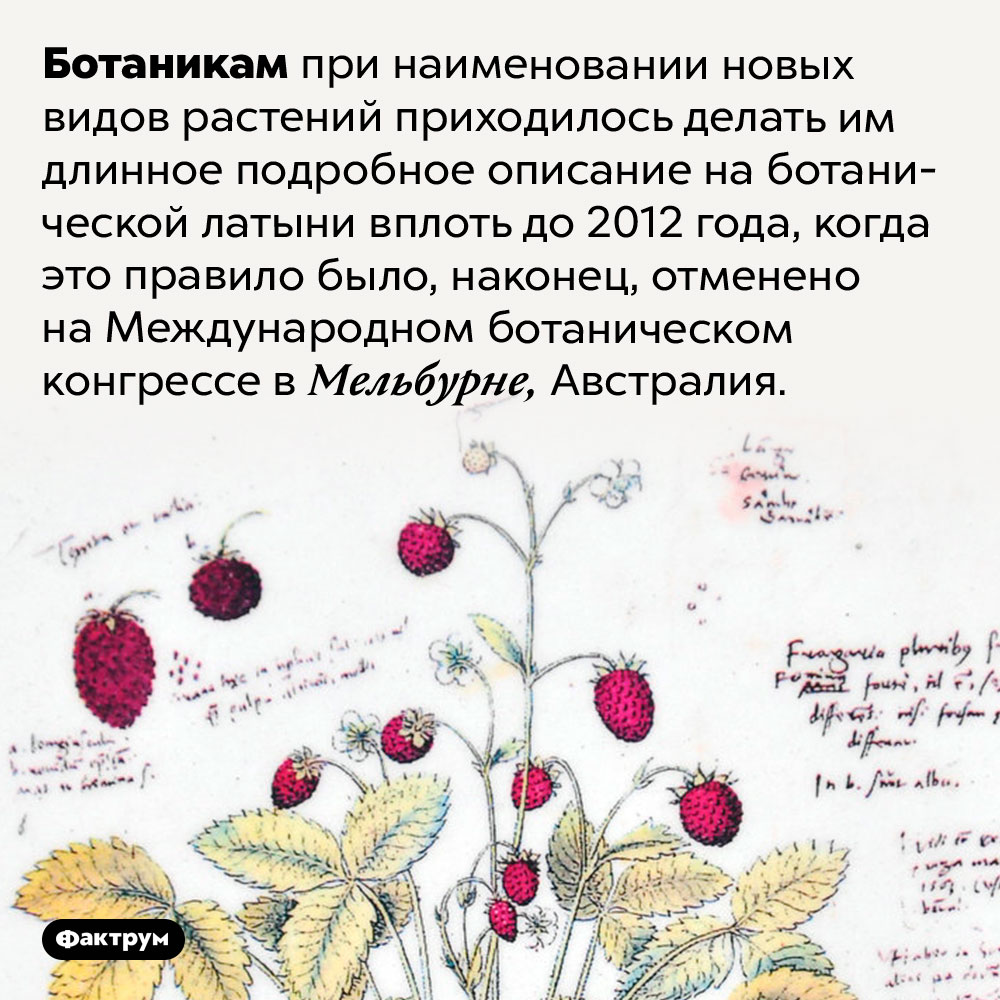 До2012года ботаники пользовались латынью для описания новых видов растений. Ботаникам при наименовании новых видов растений приходилось делать им длинное подробное описание на ботанической латыни вплоть до 2012 года, когда это правило было, наконец, отменено на Международном ботаническом конгрессе в Мельбурне, Австралия.