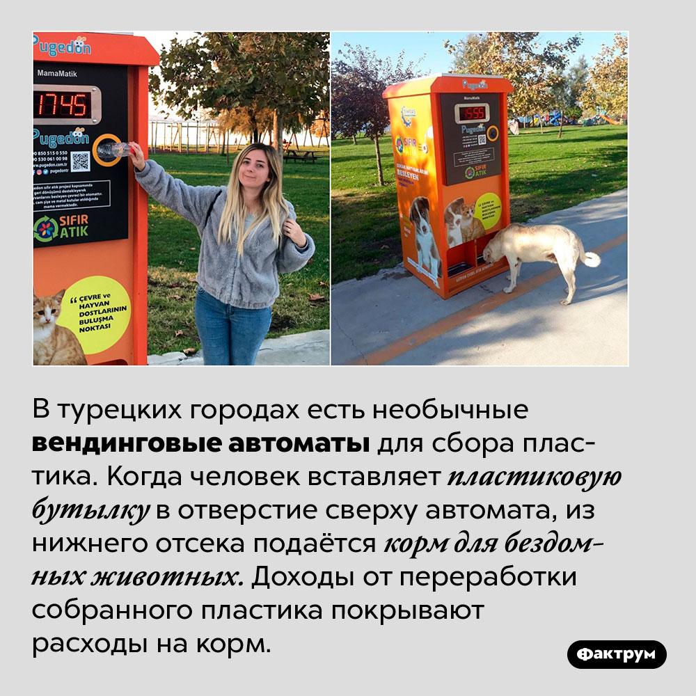 Одновременная помощь экологии ибездомным животным. В турецких городах есть необычные вендинговые автоматы для сбора пластика. Когда человек вставляет пластиковую бутылку в отверстие сверху автомата, из нижнего отсека подаётся корм для бездомных животных. Доходы от переработки собранного пластика покрывают расходы на корм.