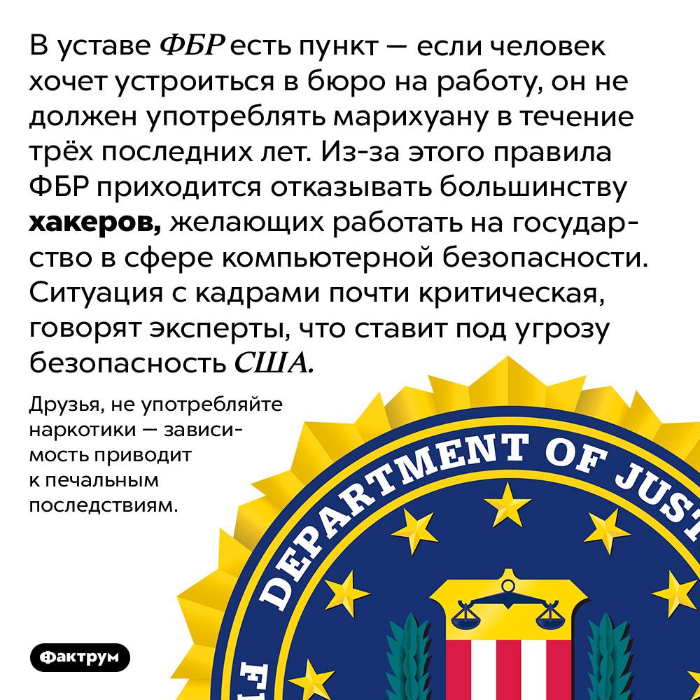Неожиданная связь между компьютерным талантом имарихуаной. В уставе ФБР есть пункт — если человек хочет устроиться в бюро на работу, он не должен употреблять марихуану в течение трёх последних лет. Из-за этого правила ФБР приходится отказывать большинству хакеров, желающих работать на государство в сфере компьютерной безопасности. Ситуация с кадрами почти критическая, говорят эксперты, что ставит под угрозу безопасность США.  Друзья, не употребляйте наркотики — зависимость приводит к печальным последствиям.