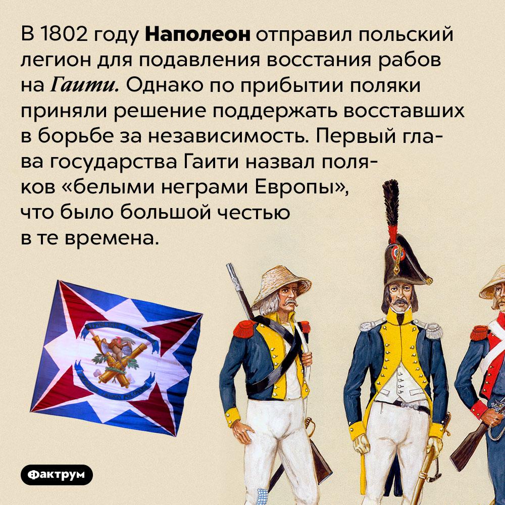 «Белые негры Европы». В 1802 году Наполеон отправил польский легион для подавления восстания рабов на Гаити. Однако по прибытии поляки приняли решение поддержать восставших в борьбе за независимость. Первый глава государства Гаити назвал поляков «белыми неграми Европы», что было большой честью в те времена.