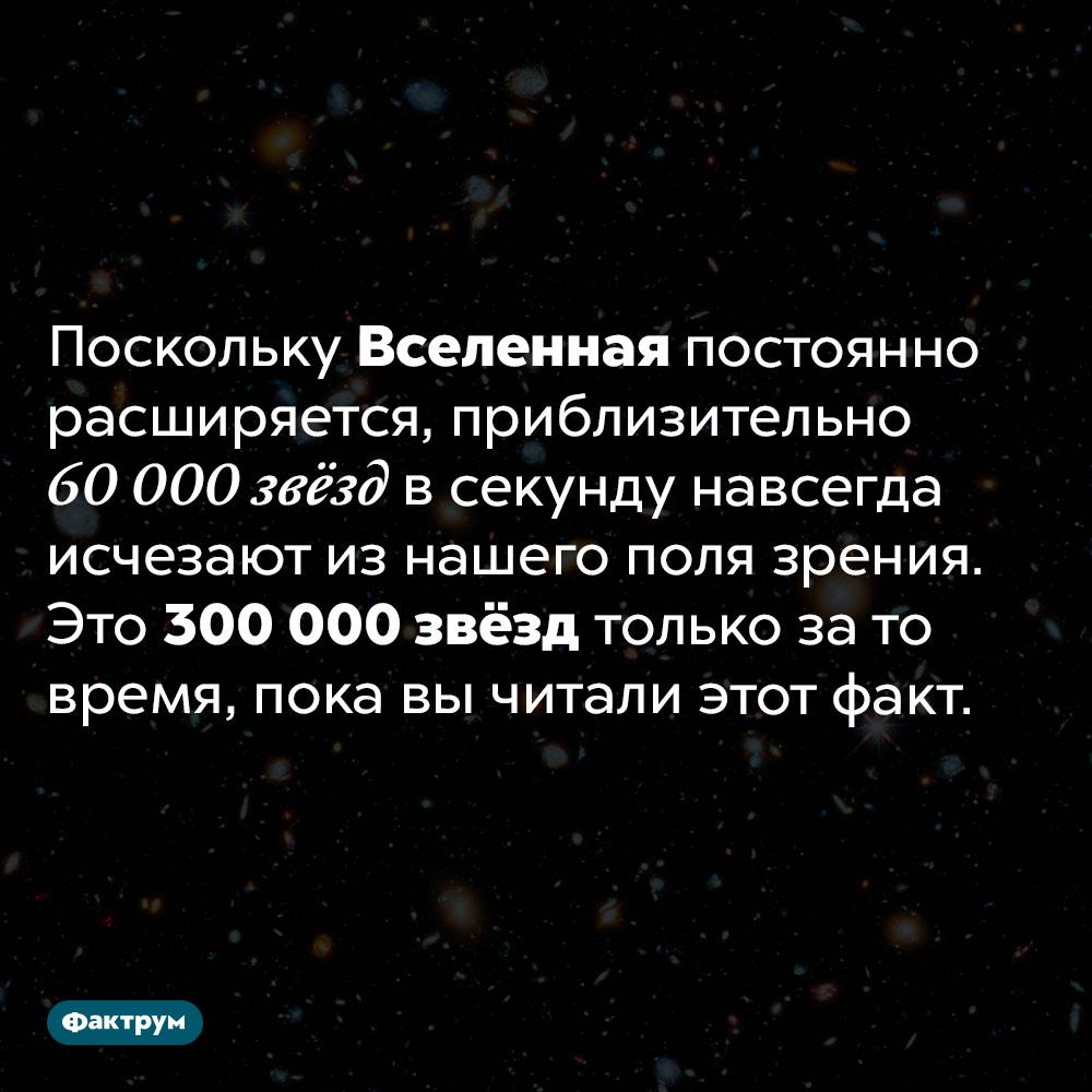 Мы теряем из поля зрения по60000 звёзд всекунду. Поскольку Вселенная постоянно расширяется, приблизительно 60 000 звёзд в секунду навсегда исчезают из нашего поля зрения. Это 300 000 звёзд только за то время, пока вы читали этот факт.