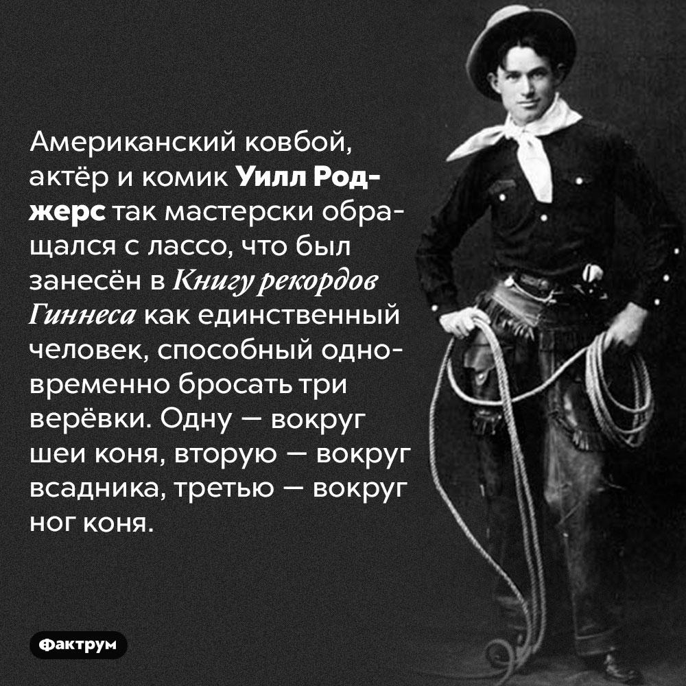 Ковбой Уилл Роджерс мог бросить одновременно три лассо. Американский ковбой, актёр и комик Уилл Роджерс так мастерски обращался с лассо, что был занесён в Книгу рекордов Гиннеса как единственный человек, способный одновременно бросать три верёвки. Одну — вокруг шеи коня, вторую — вокруг всадника, третью — вокруг ног коня.