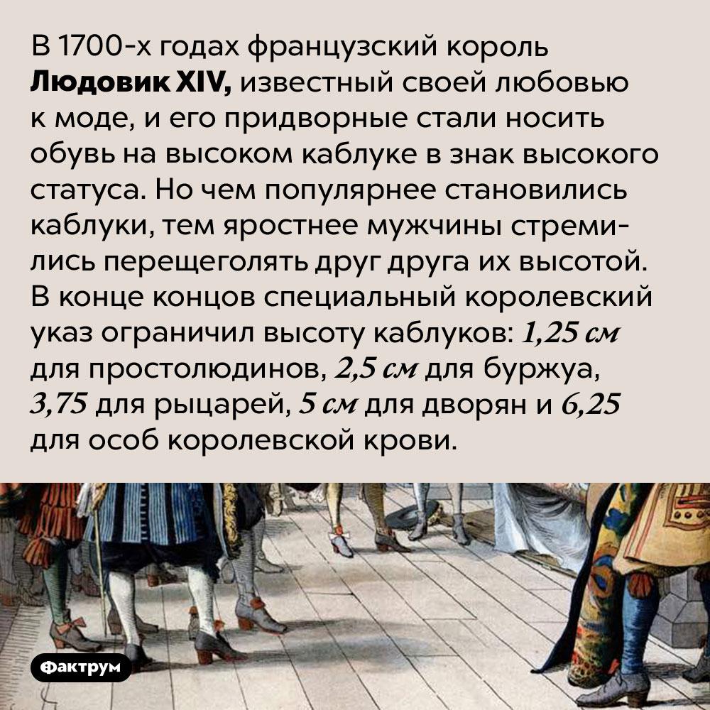 ЛюдовикXIV запрещал придворным носить каблуки выше, чем унего. В 1700-х годах французский король Людовик XIV, известный своей любовью к моде, и его придворные стали носить обувь на высоком каблуке в знак высокого статуса. Но чем популярнее становились каблуки, тем яростнее мужчины стремились перещеголять друг друга их высотой. В конце концов специальный королевский указ ограничил высоту каблуков: 1,25 см для простолюдинов, 2,5 см для буржуа, 3,75 для рыцарей, 5 см для дворян и 6,25 для особ королевской крови.