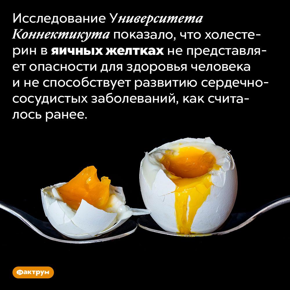 Яичные желтки несодержат вредный холестерин. Исследование Университета Коннектикута показало, что холестерин в яичных желтках не представляет опасности для здоровья человека и не способствует развитию сердечно-сосудистых заболеваний, как считалось ранее.