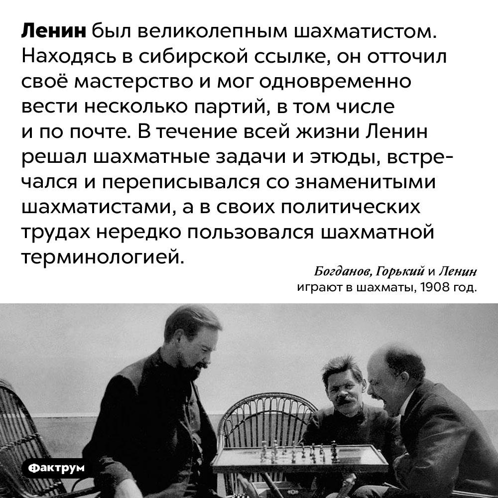 Ленин увлекался шахматами. Ленин был великолепным шахматистом. Находясь в сибирской ссылке, он отточил своё мастерство и мог одновременно вести несколько партий, в том числе и по почте. В течение всей жизни Ленин решал шахматные задачи и этюды, встречался и переписывался со знаменитыми шахматистами, а в своих политических трудах нередко пользовался шахматной терминологией.