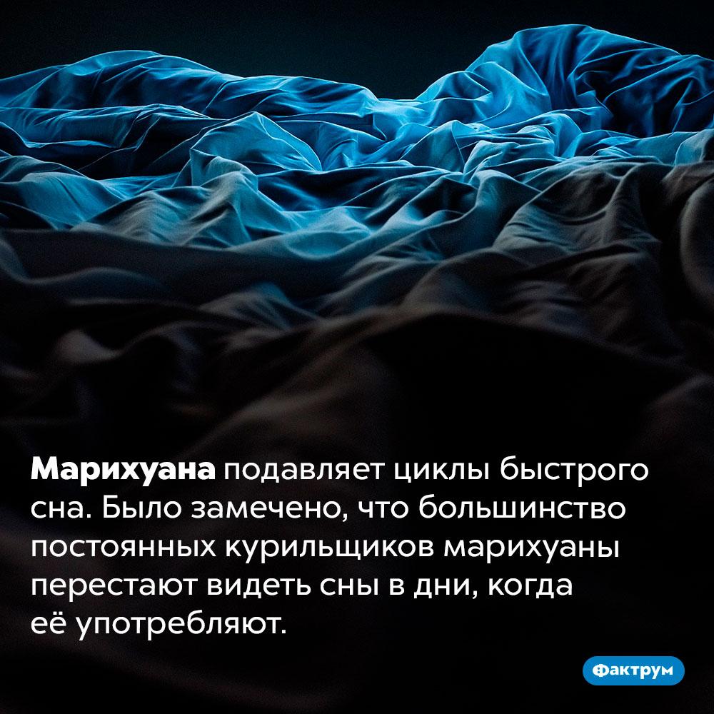 Марихуана отключает сны. Марихуана подавляет циклы быстрого сна. Было замечено, что большинство постоянных курильщиков марихуаны перестают видеть сны в дни, когда её употребляют.