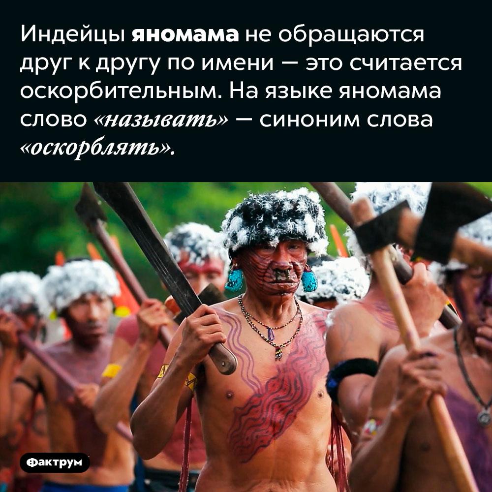 Почему яномама неназывают друг друга поимени. Индейцы яномама не обращаются друг к другу по имени — это считается оскорбительным. На языке яномама слово «называть» — синоним слова «оскорблять».