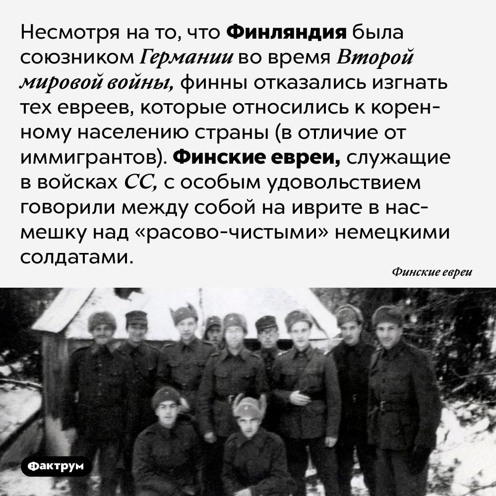 Финские евреи служили ввойсках СС. Несмотря на то, что Финляндия была союзником Германии во время Второй мировой войны, финны отказались изгнать тех евреев, которые относились к коренному населению страны (в отличие от иммигрантов). Финские евреи, служащие в войсках СС, с особым удовольствием говорили между собой на иврите в насмешку над «расово-чистыми» немецкими солдатами.