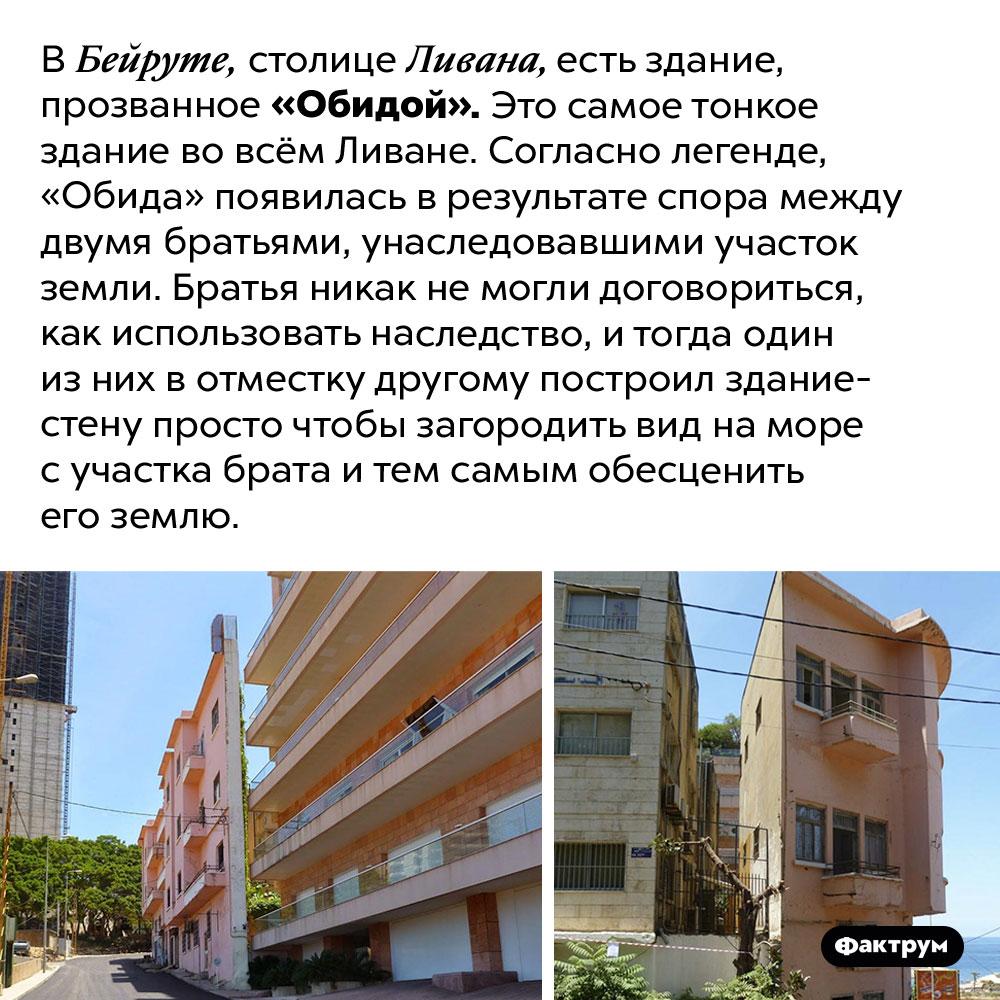 Самое тонкое здание вЛиване было построено из-заобиды. В Бейруте, столице Ливана, есть здание, прозванное «Обидой». Это самое тонкое здание во всём Ливане. Согласно легенде, «Обида» появилась в результате спора между двумя братьями, унаследовавшими участок земли. Братья никак не могли договориться, как использовать наследство, и тогда один из них в отместку другому построил здание-стену просто чтобы загородить вид на море с участка брата и тем самым обесценить его землю.