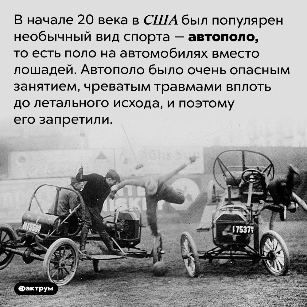 Автополо — необычный вид спорта начала 20века. В начале 20 века в США был популярен необычный вид спорта — автополо, то есть поло на автомобилях вместо лошадей. Автополо было очень опасным занятием, чреватым травмами вплоть до летального исхода, и поэтому его запретили.