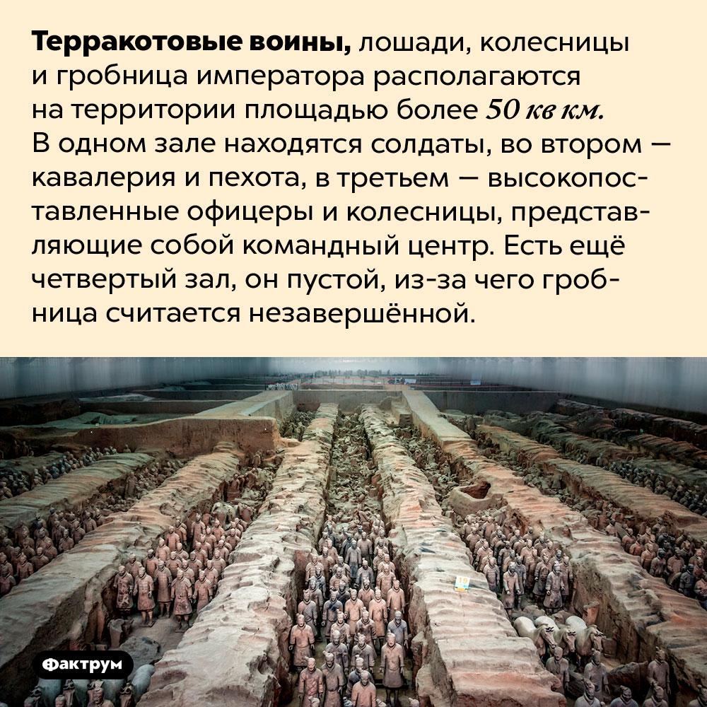 Мавзолей Цинь Шихуанди сТерракотовой армией — одна изсамых масштабных обнаруженных гробниц. Терракотовые воины, лошади, колесницы и гробница императора располагаются на территории площадью более 50 кв км. В одном зале находятся солдаты, во втором — кавалерия и пехота, в третьем — высокопоставленные офицеры и колесницы, представляющие собой командный центр. Есть ещё четвертый зал, он пустой, из-за чего гробница считается незавершённой.