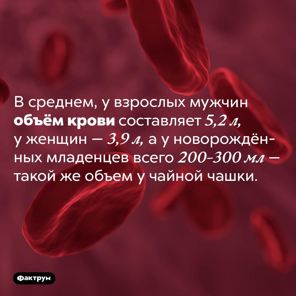 Сколько крови уноворождённых?. В среднем, у взрослых мужчин объём крови составляет 5,2 л, у женщин — 3,9 л, а у новорождённых младенцев всего 200-300 мл — такой же объем у чайной чашки.