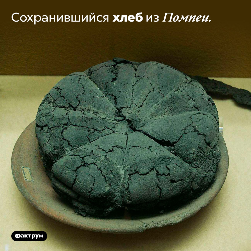 Сохранившийся хлеб изПомпеи.