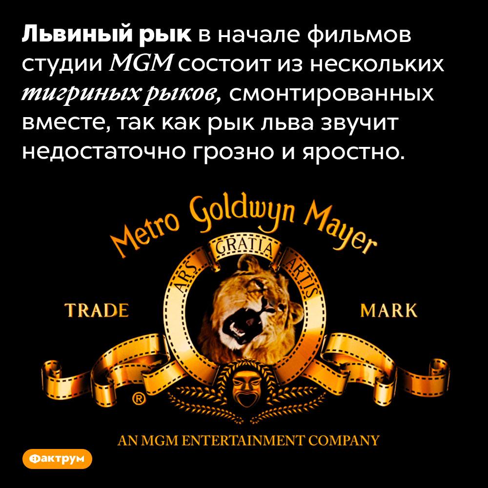 Львиный рык вначале фильмов студии <em>MGM</em> — это тигриный рык. Львиный рык в начале фильмов студии <em>MGM</em> состоит из нескольких тигриных рыков, смонтированных вместе, так как рык льва звучит недостаточно грозно и яростно.