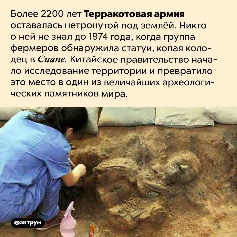 Воины терракотовой армии «прятались» отчеловечества более 2000лет. Более 2200 лет Терракотовая армия оставалась нетронутой под землёй. Никто о ней не знал до 1974 года, когда группа фермеров обнаружила статуи, копая колодец в Сиане. Китайское правительство начало исследование территории и превратило это место в один из величайших археологических памятников мира.