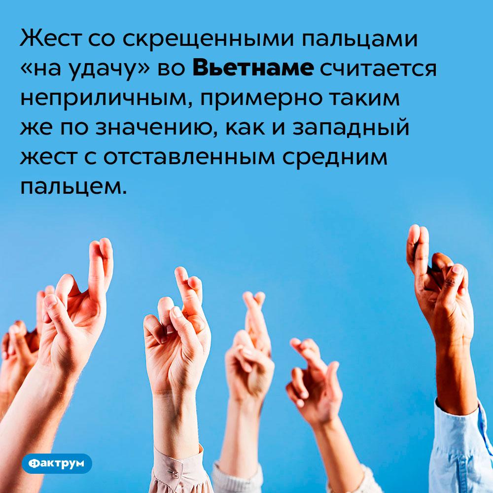 Вьетнамцы считают скрещенные пальцы неприличным жестом. Жест со скрещенными пальцами «на удачу» во Вьетнаме считается неприличным, примерно таким же по значению, как и западный жест с отставленным средним пальцем.