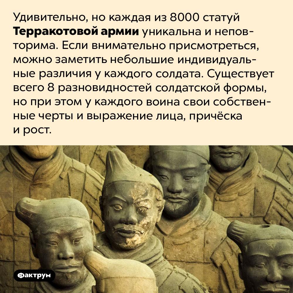 Все статуи Терракотовой армии разные. Удивительно, но каждая из 8000 статуй Терракотовой армии уникальна и неповторима. Если внимательно присмотреться, можно заметить небольшие индивидуальные различия у каждого солдата. Существует всего 8 разновидностей солдатской формы, но при этом у каждого воина свои собственные черты и выражение лица, причёска и рост.