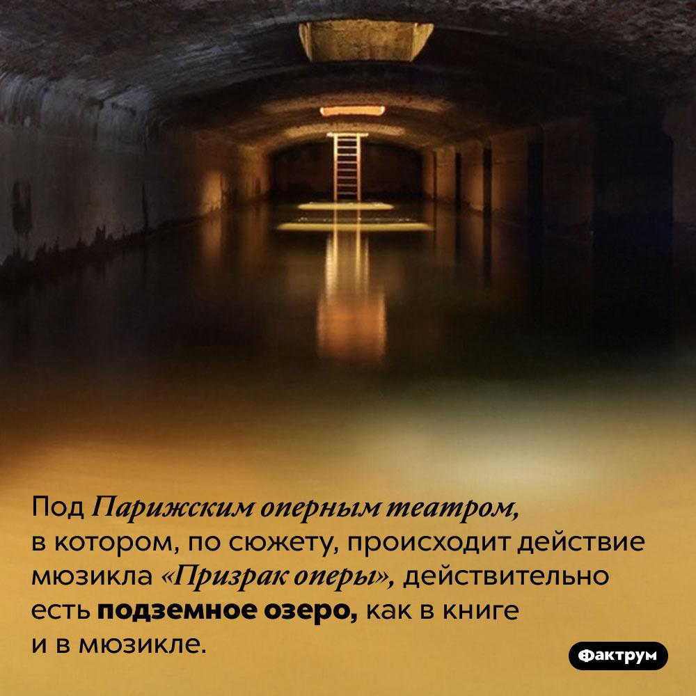 Под Парижским оперным театром есть подземное озеро. Под Парижским оперным театром, в котором, по сюжету, происходит действие мюзикла «Призрак оперы», действительно есть подземное озеро, как в книге и в мюзикле.