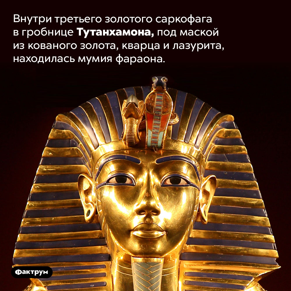 Внутри третьего золотого саркофага вгробнице Тутанхамона, под маской изкованого золота, кварца илазурита, находилась мумия фараона.
