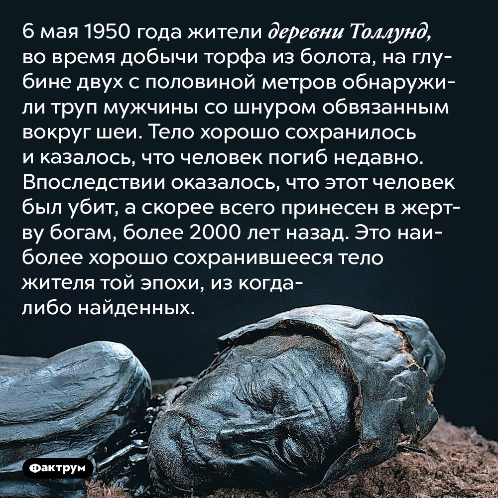 Человек изТоллунда. 6 мая 1950 года жители деревни Толлунд во время добычи торфа из болота на глубине двух с половиной метров обнаружили труп мужчины со шнуром, обвязанным вокруг шеи. Тело хорошо сохранилось и казалось, что человек погиб недавно. Впоследствии оказалось, что этот человек был убит — вероятнее всего, принесён в жертву богам — более 2000 лет назад. Это наиболее хорошо сохранившееся тело жителя той эпохи из когда-либо найденных.