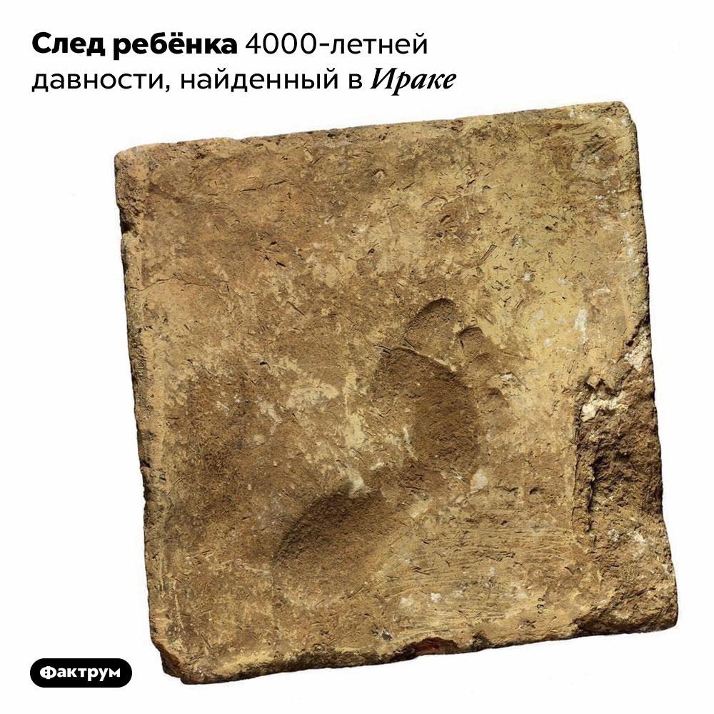 След ребёнка 4000-летней давности, найденный вИраке.
