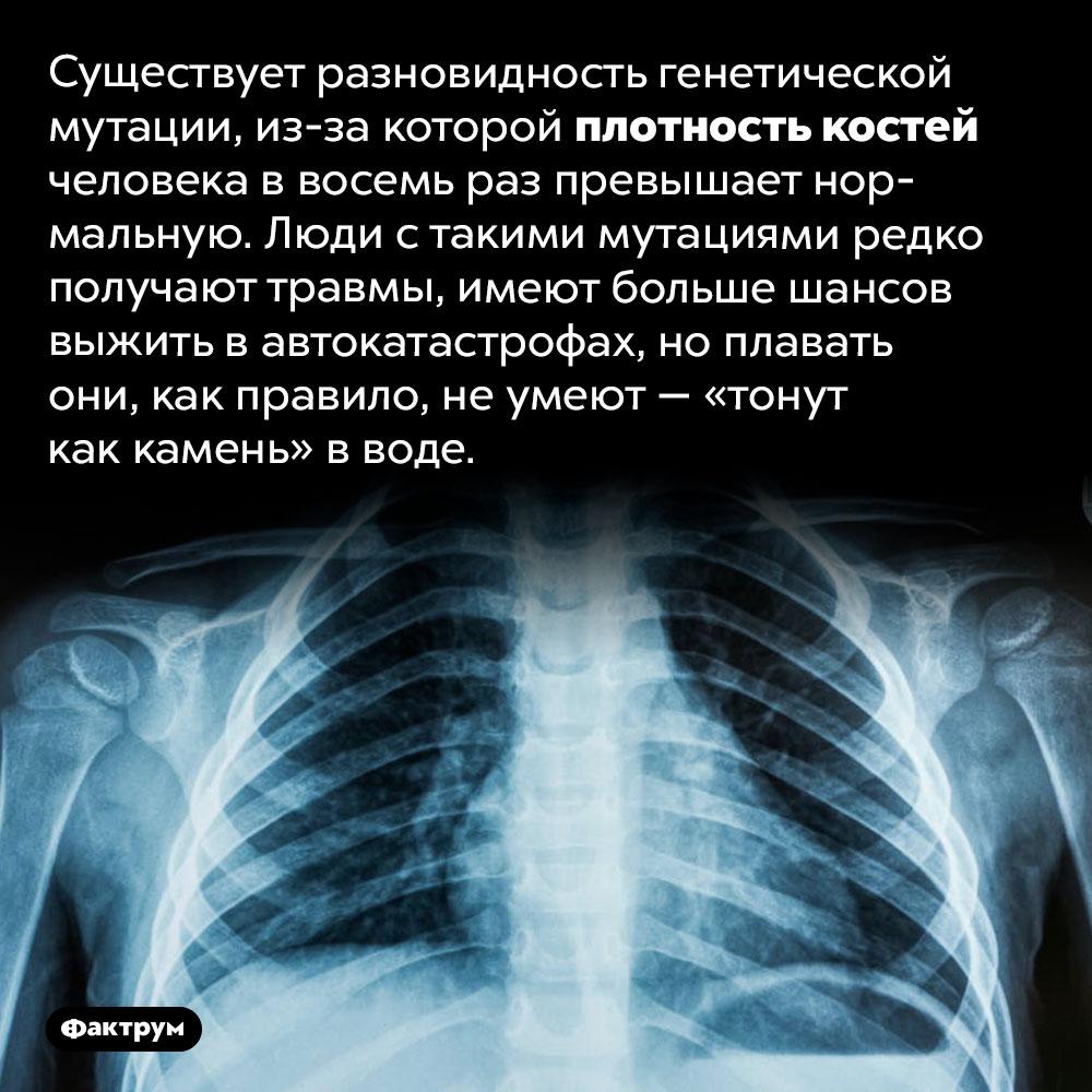 Существуют «неуязвимые» люди сосверхплотными костями. Существует разновидность генетической мутации, из-за которой плотность костей человека в восемь раз превышает нормальную. Люди с такими мутациями редко получают травмы, имеют больше шансов выжить в автокатастрофах, но плавать они, как правило, не умеют — «тонут как камень» в воде.