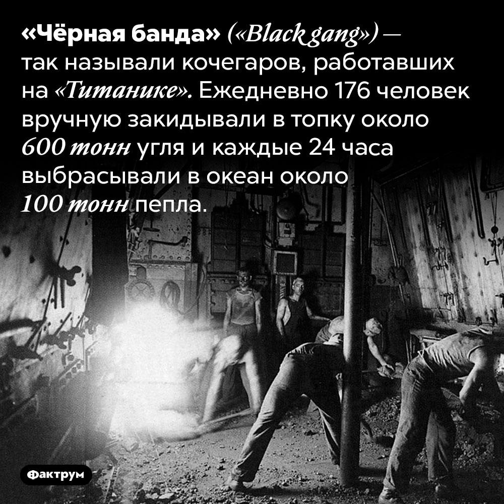 Чёрная банда «Титаника». «Чёрная банда» <em>(«Black gang») —</em> так называли кочегаров, работавших на «Титанике». Ежедневно 176 человек вручную закидывали в топку около 600 тонн угля и каждые 24 часа выбрасывали в океан около 100 тонн пепла.