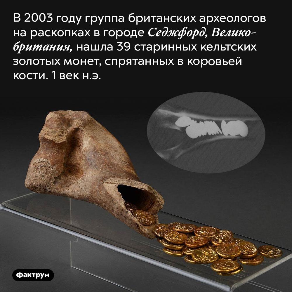 Монеты, спрятанные вкоровьей кости. В 2003 году группа британских археологов на раскопках в городе Седжфорд, Великобритания, нашла 39 старинных кельтских золотых монет, спрятанных в коровьей кости. 1 век н.э.