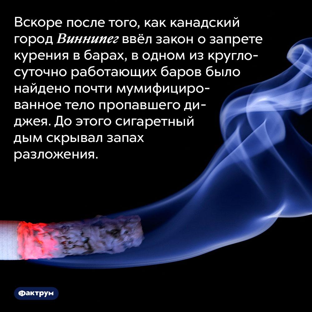 Запах сигарет маскирует запах разложения. Вскоре после того, как канадский город Виннипег ввёл закон о запрете курения в барах, в одном из круглосуточно работающих баров было найдено почти мумифицированное тело пропавшего диджея. До этого сигаретный дым скрывал запах разложения.