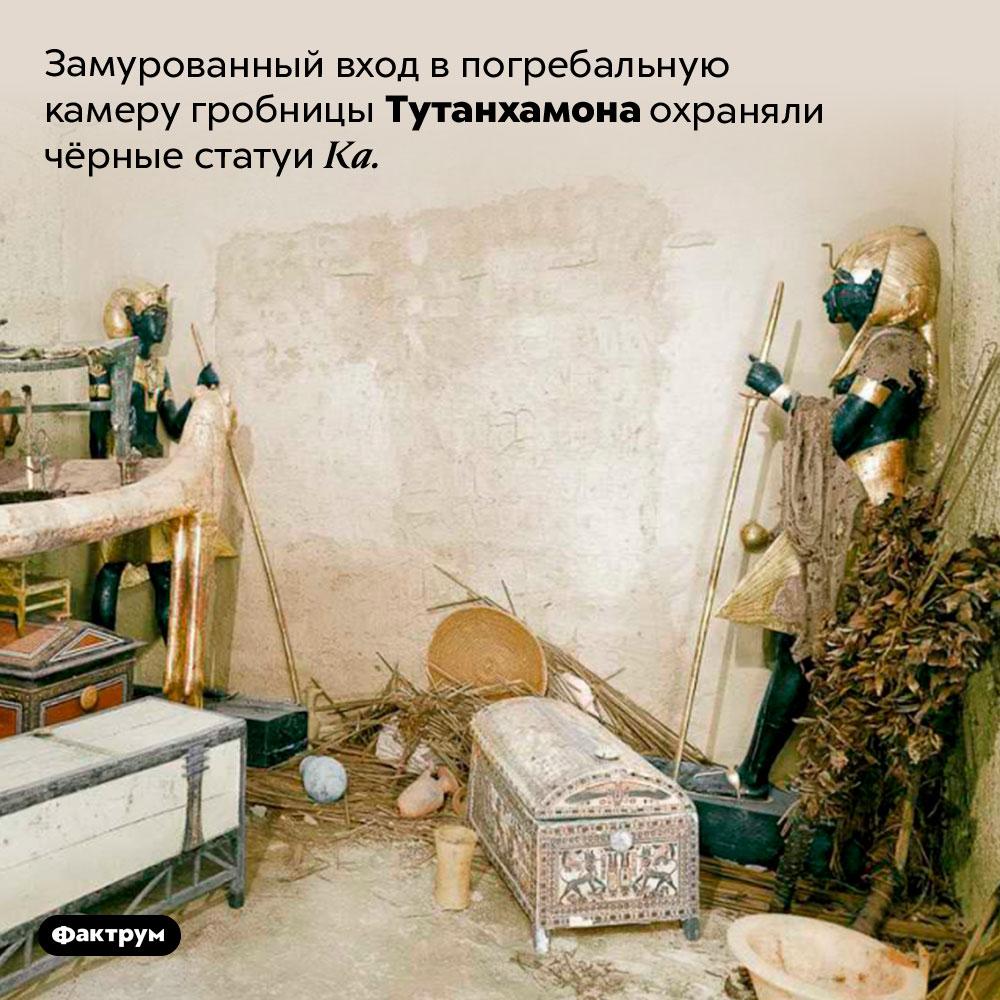 Замурованный вход впогребальную камеру гробницы Тутанхамона охраняли чёрные статуи Ка.
