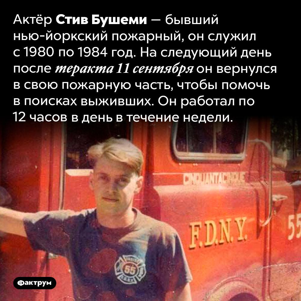 Актёр Стив Бушеми — бывший пожарный. Актёр Стив Бушеми — бывший нью-йоркский пожарный, он служил с 1980 по 1984 год. На следующий день после теракта 11 сентября он вернулся в свою пожарную часть, чтобы помочь в поисках выживших. Он работал по 12 часов в день в течение недели.
