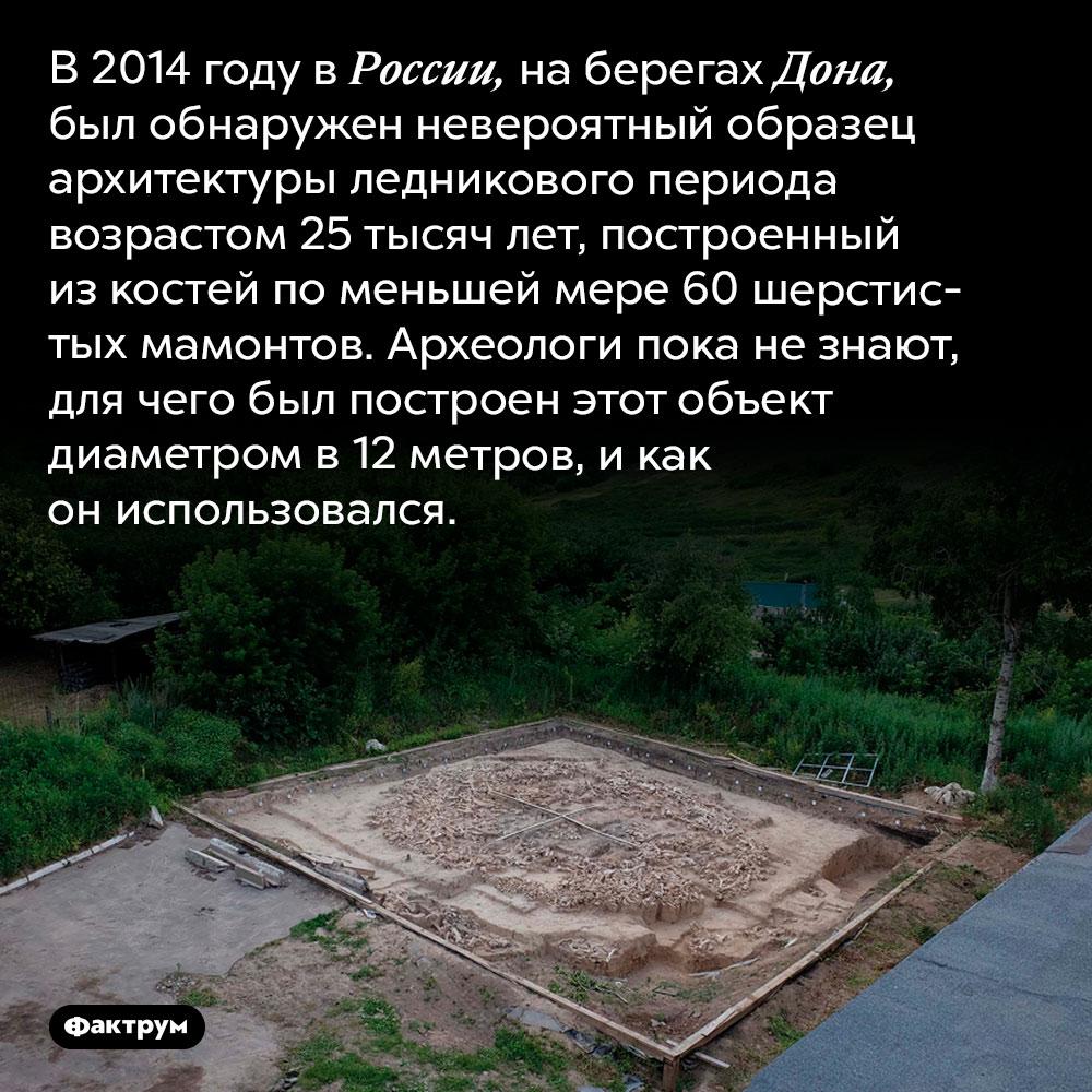 Загадочное сооружение изкостей мамонтов. В 2014 году в России, на берегах Дона, был обнаружен невероятный образец архитектуры ледникового периода возрастом 25 тысяч лет, построенный из костей по меньшей мере 60 шерстистых мамонтов. Археологи пока не знают, для чего был построен этот объект диаметром в 12 метров, и как он использовался.