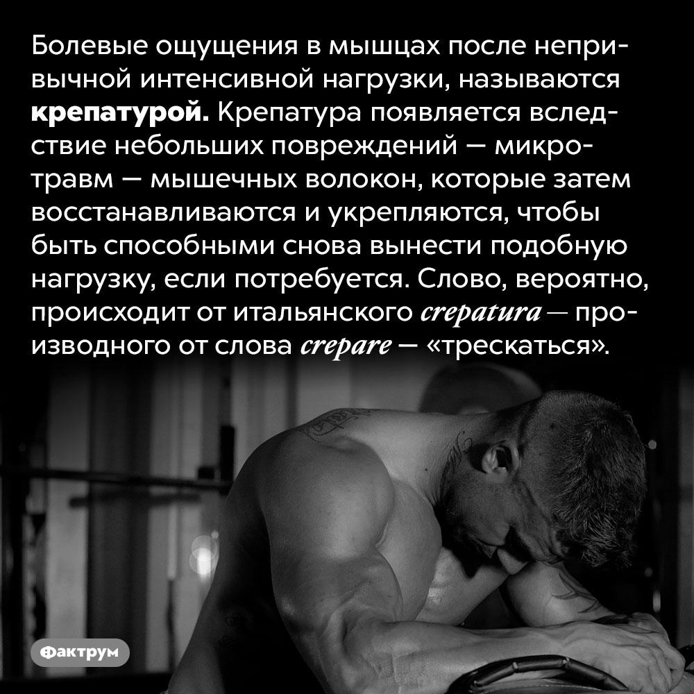 Как называется мышечная боль после тренировок. Болевые ощущения в мышцах после непривычной интенсивной нагрузки, называются крепатурой. Крепатура появляется вследствие небольших повреждений — микротравм — мышечных волокон, которые затем восстанавливаются и укрепляются, чтобы быть способными снова вынести подобную нагрузку, если потребуется. Слово, вероятно, происходит от итальянского crepatura — производного от слова crepare — «трескаться».