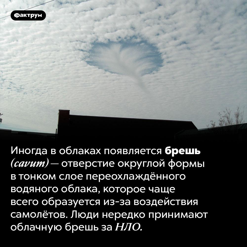 Брешь воблаке. Иногда в облаках появляется брешь <em>(cavum) —</em> отверстие округлой формы в тонком слое переохлаждённого водяного облака, которое чаще всего образуется из-за воздействия самолётов. Люди нередко принимают облачную брешь за НЛО.