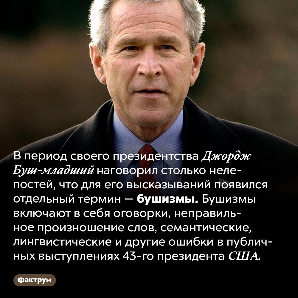 Что такое бушизмы. В период своего президентства Джордж Буш-младший наговорил столько нелепостей, что для его высказываний появился отдельный термин — бушизмы. Бушизмы включают в себя оговорки, неправильное произношение слов, семантические, лингвистические и другие ошибки в публичных выступлениях 43-го президента США.