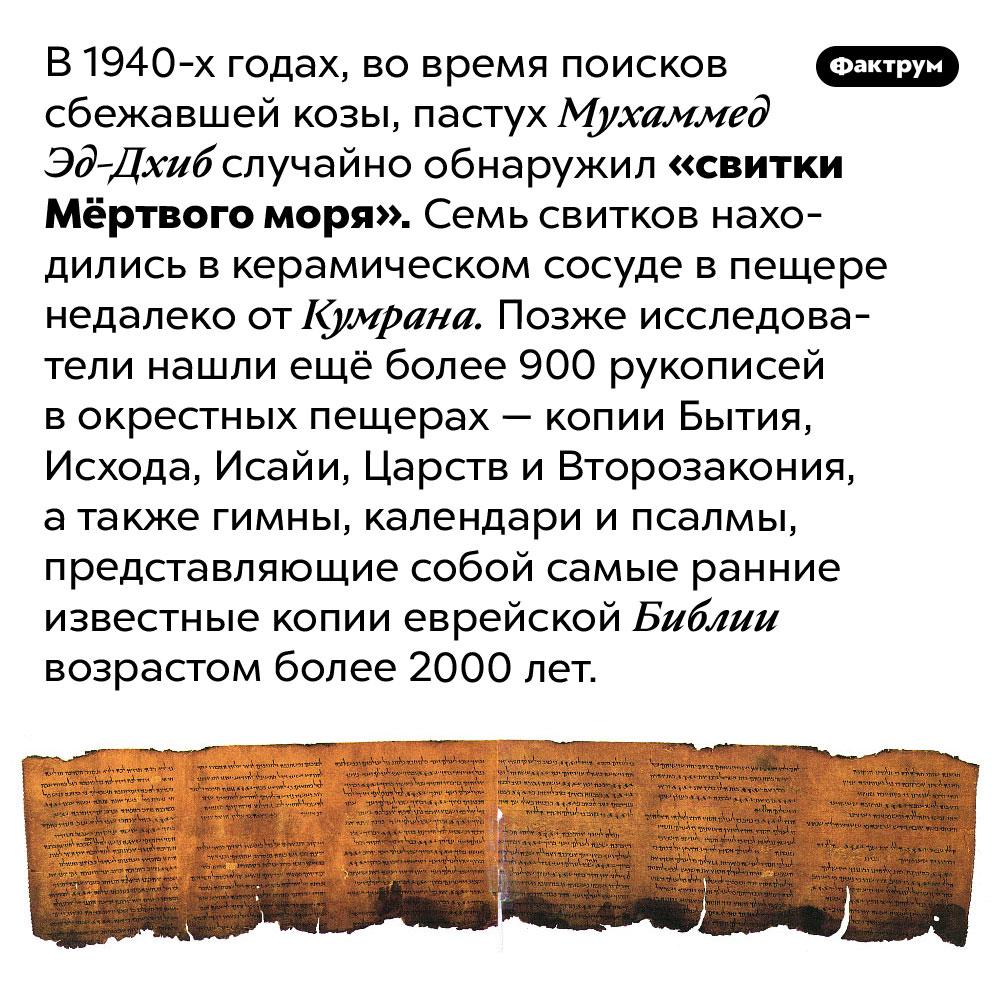 «Свитки Мёртвого моря». В 1940-х годах, во время поисков сбежавшей козы, пастух Мухаммед Эд-Дхиб случайно обнаружил «свитки Мёртвого моря». Семь свитков находились в керамическом сосуде в пещере недалеко от Кумрана. Позже исследователи нашли ещё более 900 рукописей в окрестных пещерах — копии Бытия, Исхода, Исайи, Царств и Второзакония, а также гимны, календари и псалмы, представляющие собой самые ранние известные копии еврейской Библии возрастом более 2000 лет.
