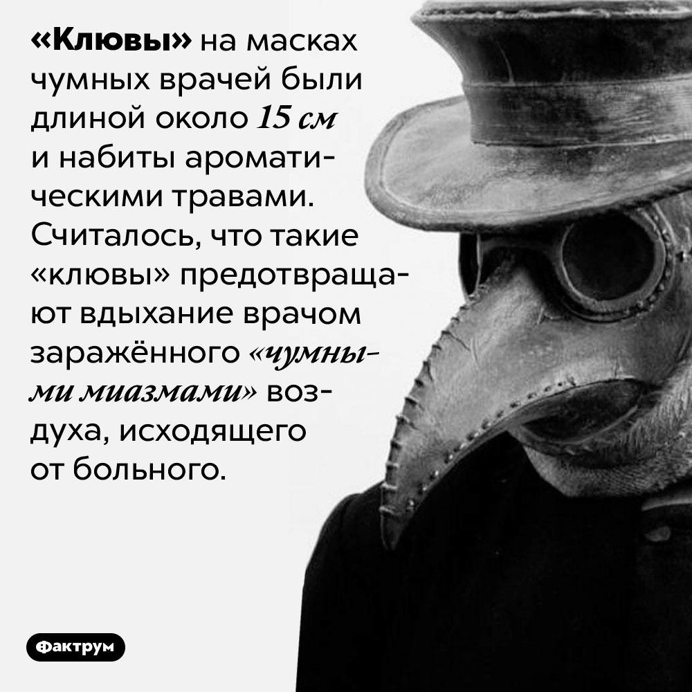Зачем были нужны «клювы» намасках чумных врачей. «Клювы» на масках чумных врачей были длиной около 15 см и набиты ароматическими травами. Считалось, что такие «клювы» предотвращают вдыхание врачом заражённого «чумными миазмами» воздуха, исходящего от больного.