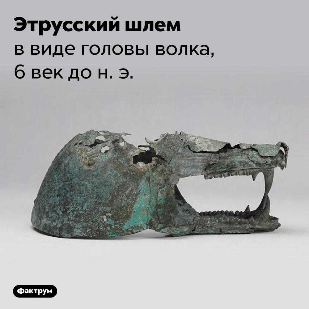 Этрусский шлем ввиде головы волка, 6век дон.э..