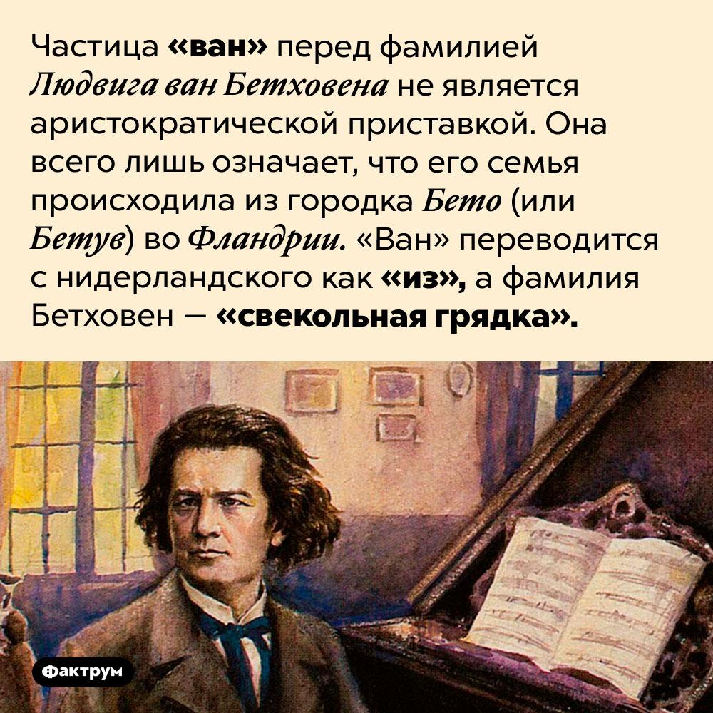 Что означает «ван» вимени Людвига ван Бетховена. Частица «ван» перед фамилией Людвига ван Бетховена не является аристократической приставкой. Она всего лишь означает, что его семья происходила из городка Бето (или Бетув) во Фландрии. «Ван» переводится с нидерландского как «из», а фамилия Бетховен — «свекольная грядка».