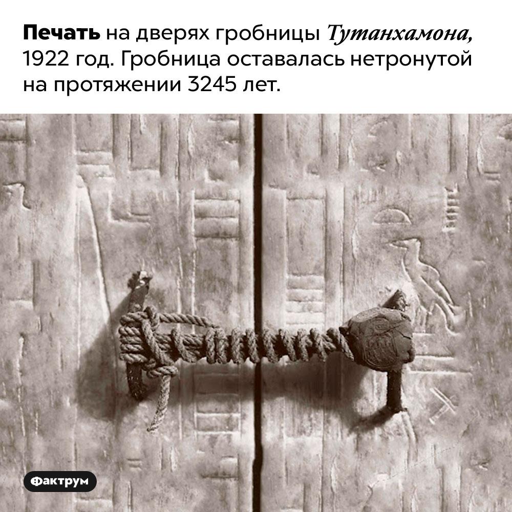 Печать надверях гробницы Тутанхамона. Печать на дверях гробницы Тутанхамона, 1922 год. Гробница оставалась нетронутой на протяжении 3245 лет.