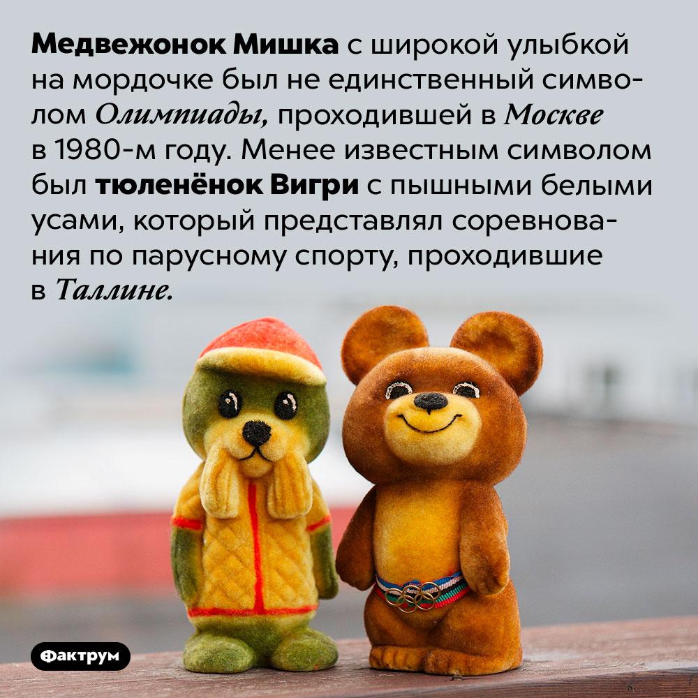 Медвежонок Мишка был не единственным символом Олимпиады-80. Медвежонок Мишка с широкой улыбкой на мордочке был не единственный символом Олимпиады, проходившей в Москве в 1980-м году. Менее известным символом был тюленёнок Вигри с пышными белыми усами, который представлял соревнования по парусному спорту, проходившие в Таллине.