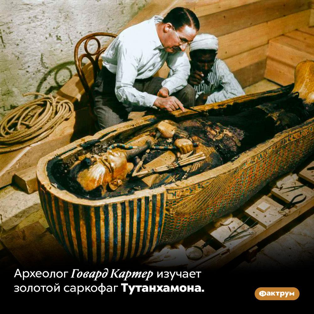Археолог Говард Картер изучает золотой саркофаг Тутанхамона.