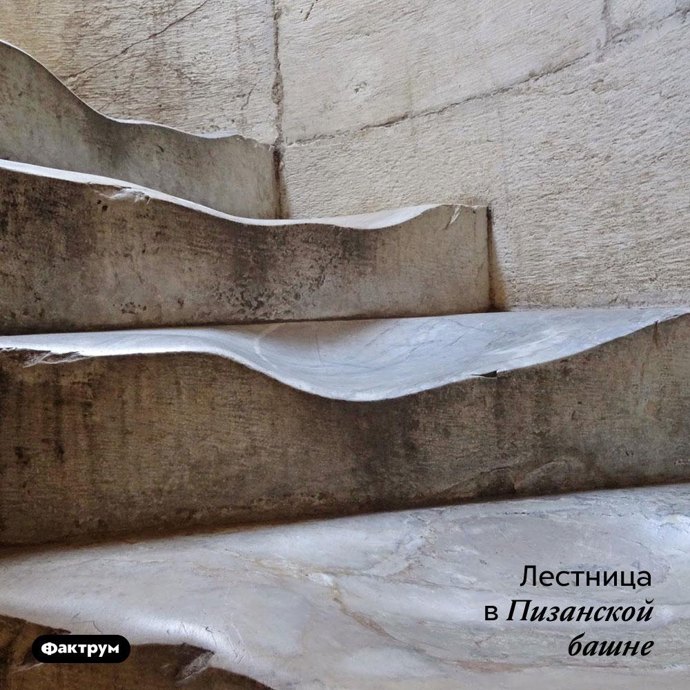 Лестница вПизанской башне.