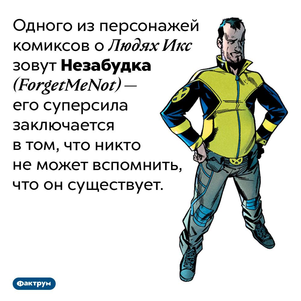 Странная суперспособность одного изЛюдей Икс. Одного из персонажей комиксов о Людях Икс зовут Незабудка <em>(ForgetMeNot) —</em> его суперсила заключается в том, что никто не может вспомнить, что он существует.